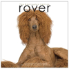 rover-book-front1