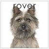 rover-book-front2