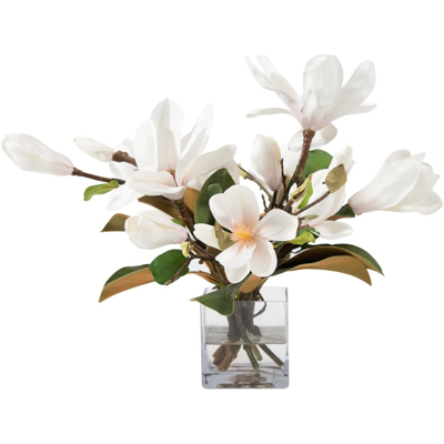 magnolia-with-foliage-cube-front1