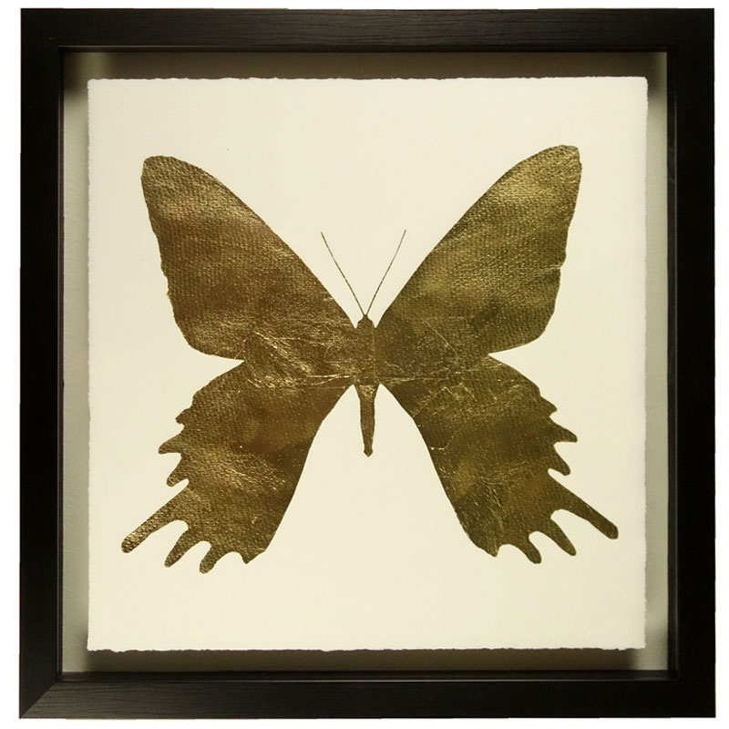 butterfly-b-front1