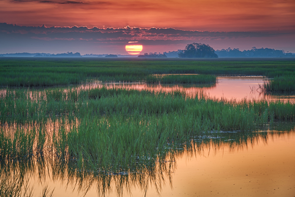 Picture for category Kiawah